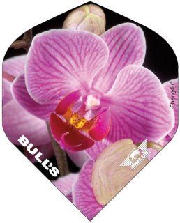 Bull's Powerflight Std. Pink Orchid | Darts Warehouse